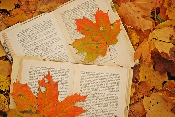 Segna il libro di settembre, tanti consigli di lettura dai bibliotecari delle nostre biblioteche